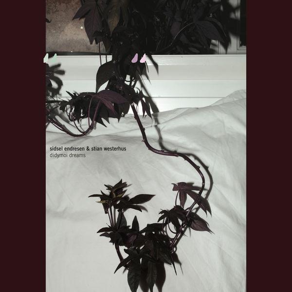Sidsel Endresen|Didymoi Dreams