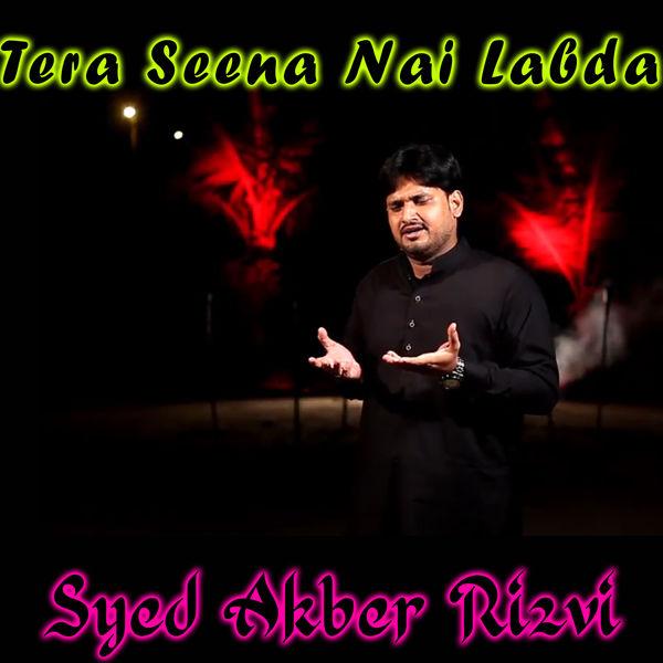 Syed Akber Rizvi - Tera Seena Nai Labda - Single