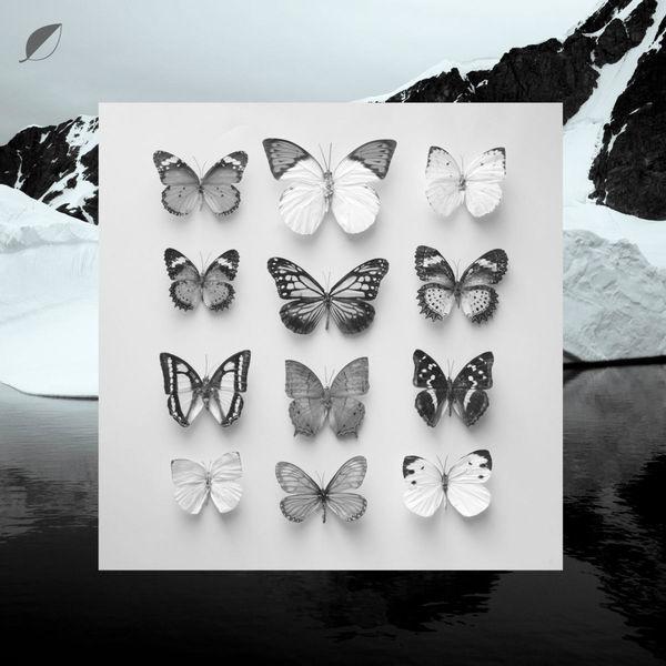 Christian Löffler - Young Alaska