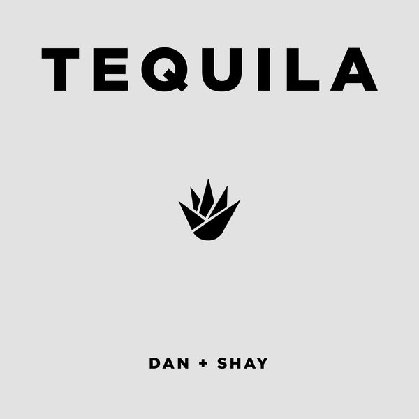 Album Tequila, Dan + Shay | Qobuz: download and streaming in