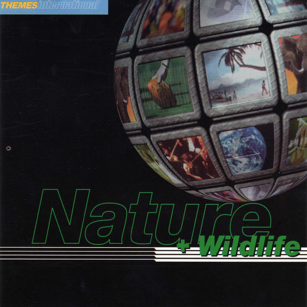 Paddy Kingsland - Nature and Wildlife
