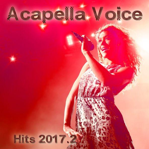 Acapella Voice Hits 2017 2 | Various Interprets – Download