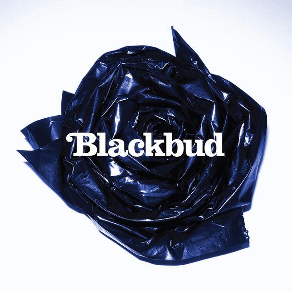 BlackBud - Blackbud