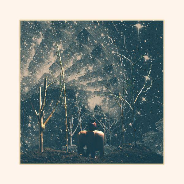 Nick Hakim|Where Will We Go, Pt. 1 (EP)