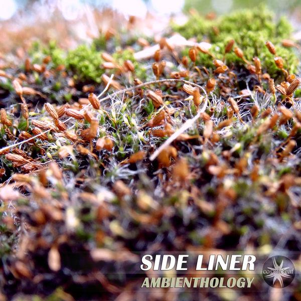 Side Liner - Ambienthology
