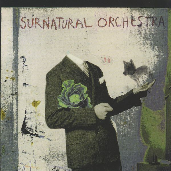 Surnatural Orchestra - Surnatural Orchestra