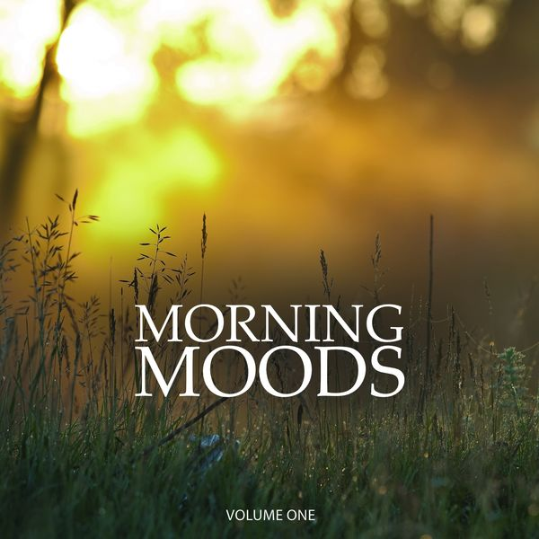 Various Artists - Morning Moods, Vol. 1 (Wonderful Chill Out & Down Beat Background Music For Cafe, Restaurant And Bar)
