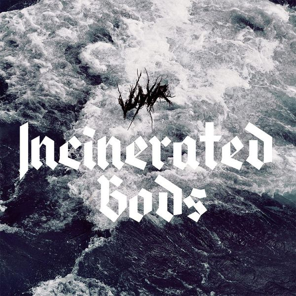 Vuyvr - Incinerated Gods