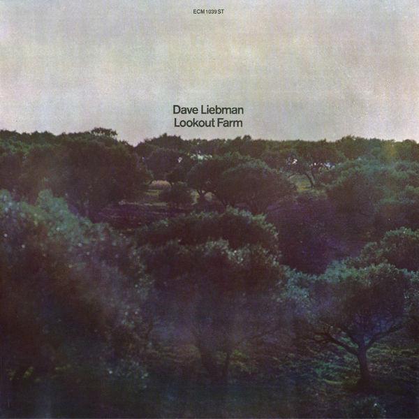 David Liebman - Lookout Farm