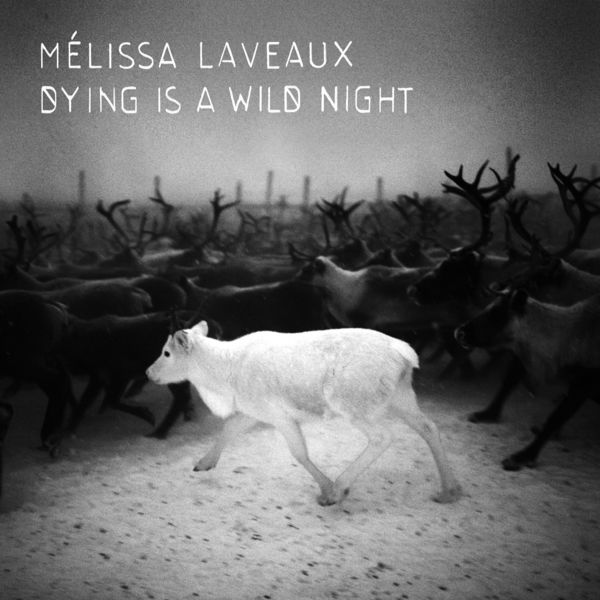 Melissa Laveaux - Dying Is a Wild Night