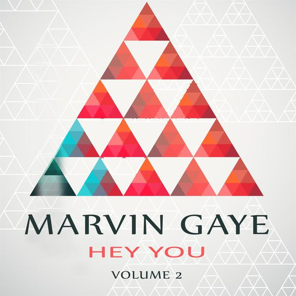 Marvin Gaye - Hey You Vol. 2