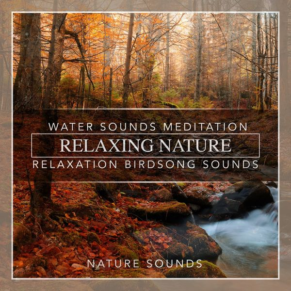 Nature Sounds - Relaxing Nature Water Sounds Meditation Relaxation Birdsong Sounds
