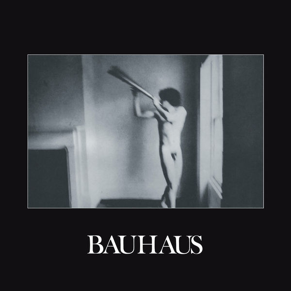 Bauhaus|In the Flat Field