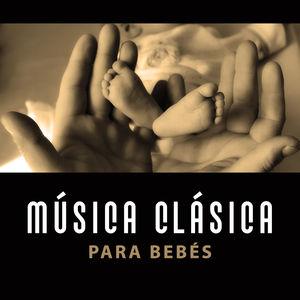 M sica cl sica para beb s efecto einstein cerebro en for Musica clasica para entrenar