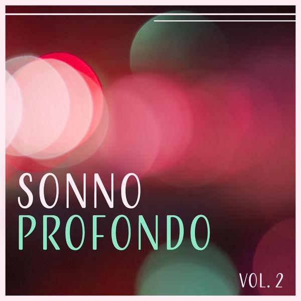 Sonno Profondo Vol 2 Buonanotte Academy Download And Listen To