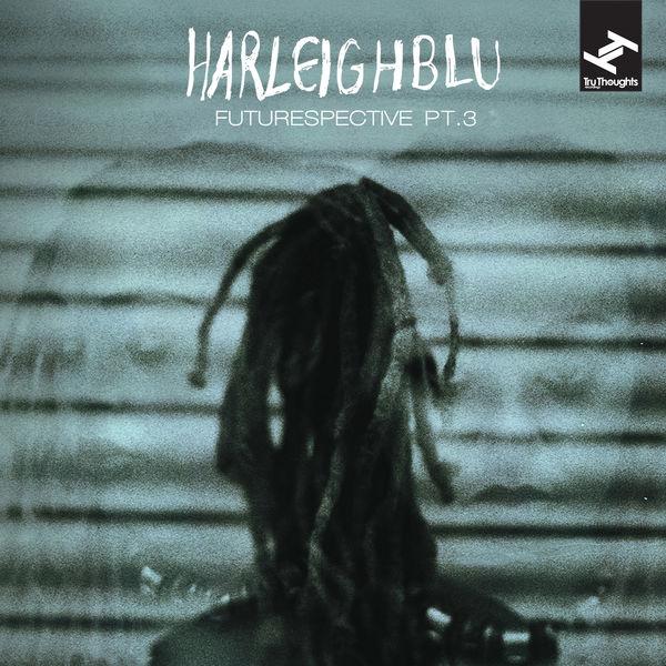 Harleighblu - Futurespective, Pt. 3