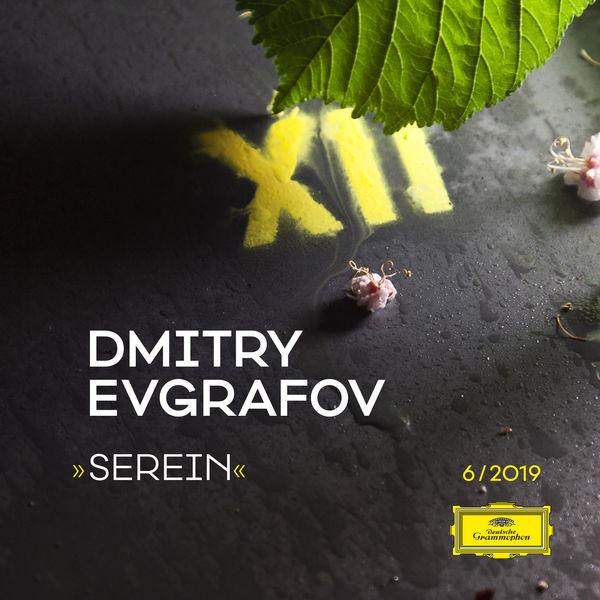 Dmitry Evgrafov - Serein