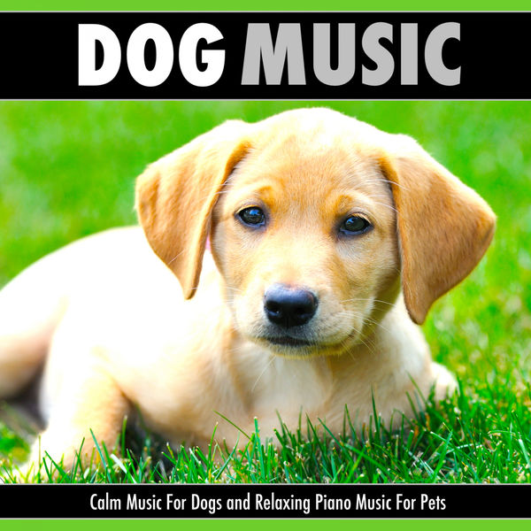 Dog Music - Dog Music: Calm Music For Dogs and Relaxing Piano Music For Pets