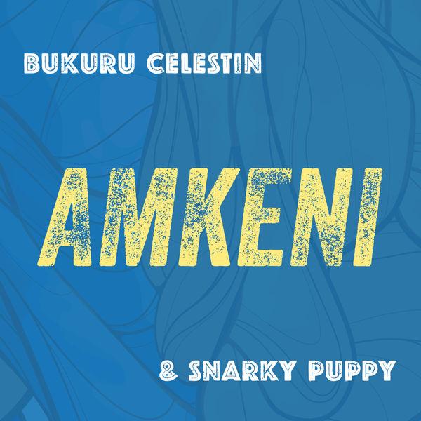 Snarky Puppy - Amkeni