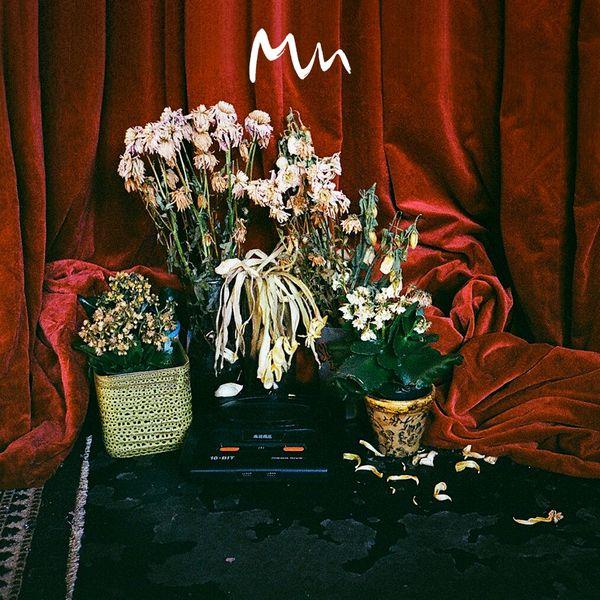 Model Man - Beta Songs