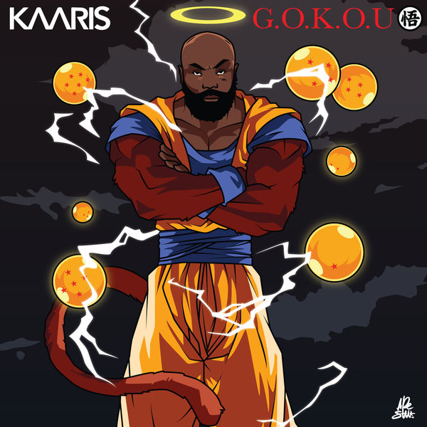 kaaris gokou