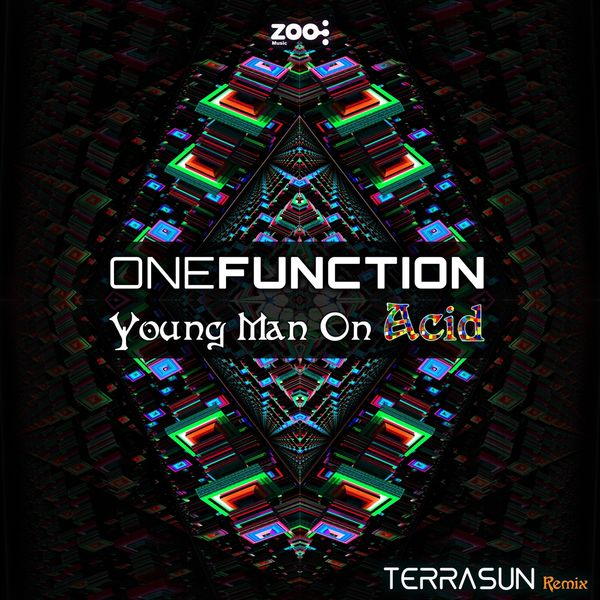 Function One - Young Man on Acid