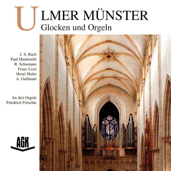 Friedrich Froschle - Ulmer Münster - Glocken und Orgeln