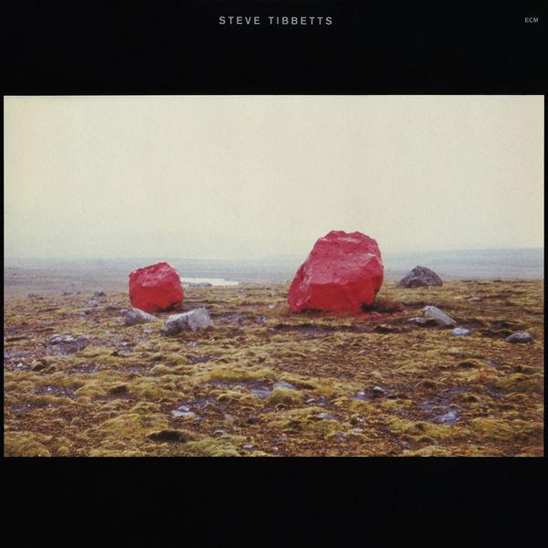 Steve Tibbetts - Exploded View