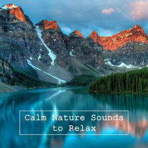 Calm Nature Sounds to Relax – Chilled Waves, Songs to Rest, Rain Sounds, Water Relaxation