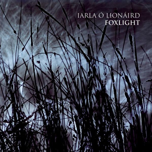 Iarla O'Lionaird - Foxlight