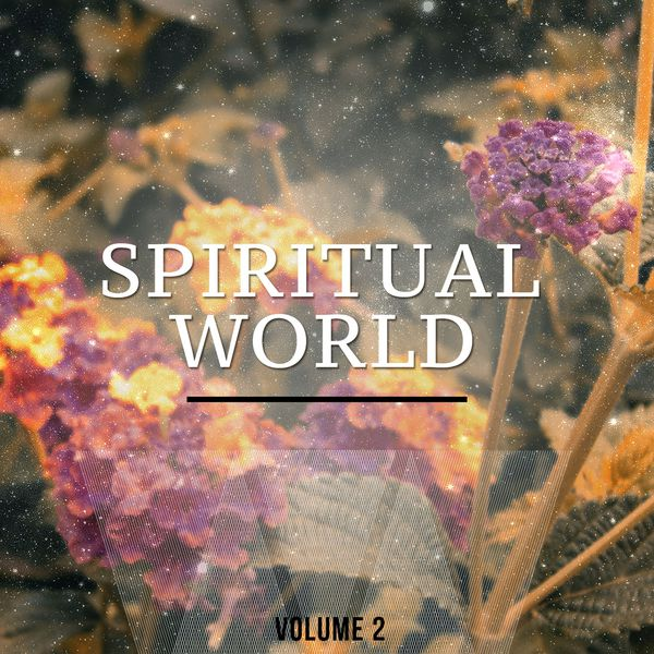 Various Artists - Spiritual World, Vol. 2