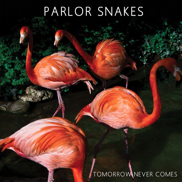 Parlor Snakes - Tomorrow Never Comes