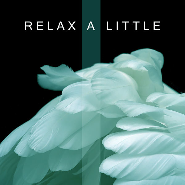 Relax Meditate Sleep, Relaxing With Sounds of Nature and Spa Music Natural White Noise Sound Therapy - Relax a Little – Nature Sounds, Therapy Music, Relax & Chill, Sleep, Natural White Noise