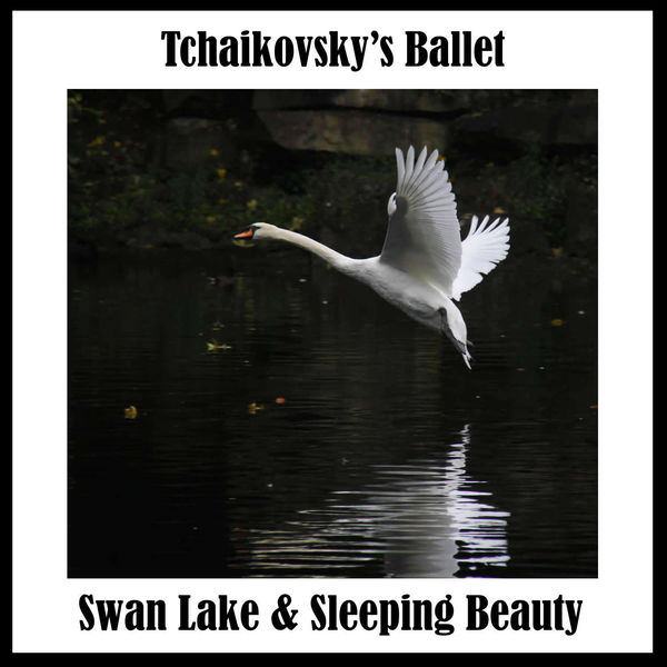 Victor Fedotov - Tchaikovsky's Ballet: Swan Lake & Sleeping Beauty