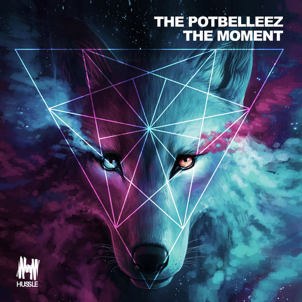 MUSIC POTBELLEEZ TÉLÉCHARGER THE THE FROM