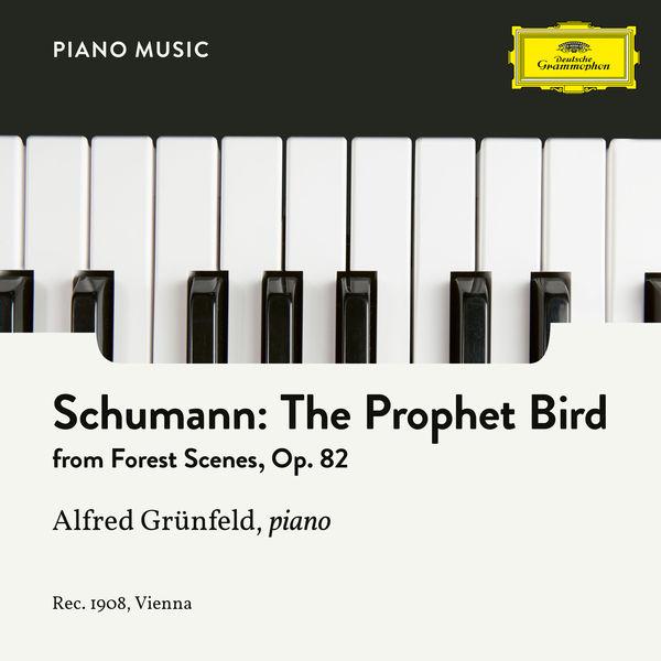 Alfred Grünfeld - Schumann: 7. The Prophet Bird