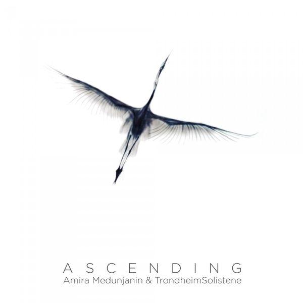 Amira Medunjanin - Ascending