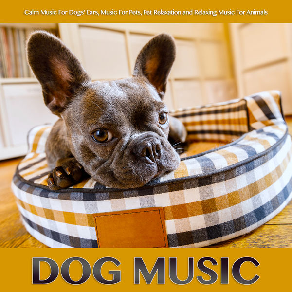 Dog Music - Dog Music: Calm Music For Dogs' Ears, Music For Pets, Pet Relaxation and Relaxing Music For Animals