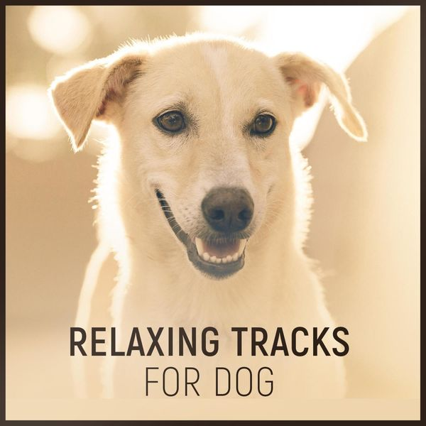 Dog Music - Relaxing Tracks for Dog – Natural Anxiety Relief with Calming Nature Sounds Music for Animal Reiki Therapy, Harmony and Peace