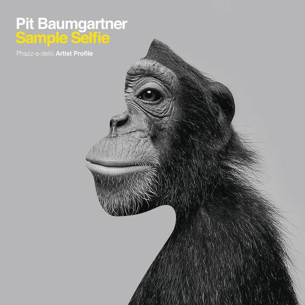 pit baumgartner - Sample Selfie