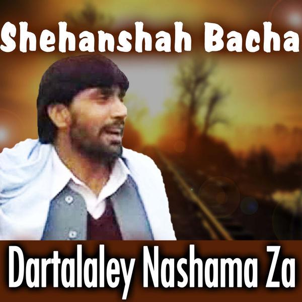Shehanshah Bacha - Dartalaley Nashama Za