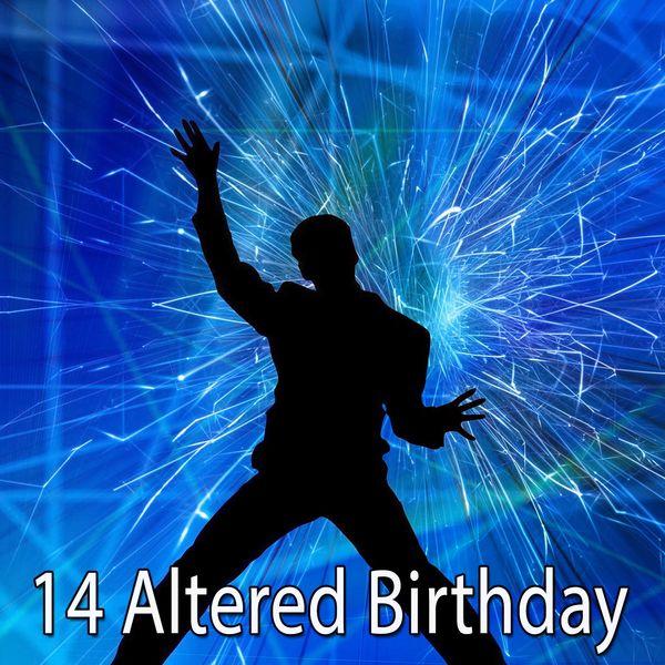 Happy Birthday - 14 Altered Birthday
