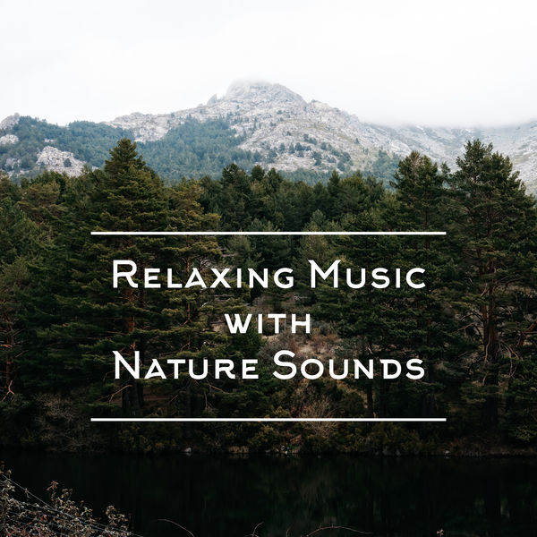 Nature Sounds Relaxation: Music for Sleep, Meditation, Massage Therapy, Spa - Relaxing Music with Nature Sounds: 15 Stress Relief Songs, Calm Background Music, Tranquil Sleep, Morning Meditation