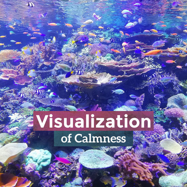 Various Artists - Visualization of Calmness: Chill with Soft Guitar, Hypno Strings, Deserve for Relaxation