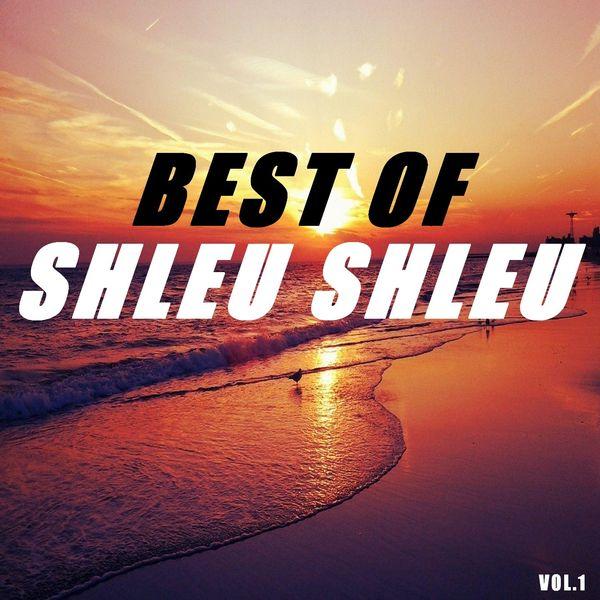 Shleu-Shleu - Best of shleu shleu (Vol.1)