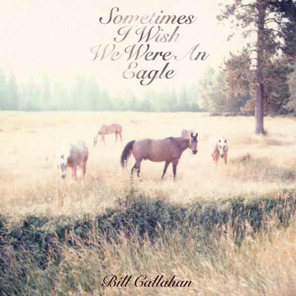 Bill Callahan - Sometimes I Wish We Were An Eagle
