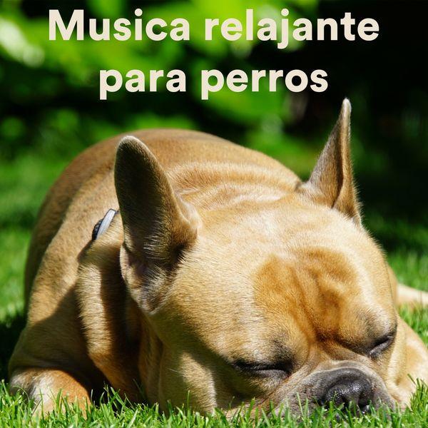 Various Artists - Musica Relajante Para Perros