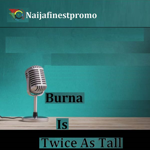Various Artists - Burna Is Twice as Tall