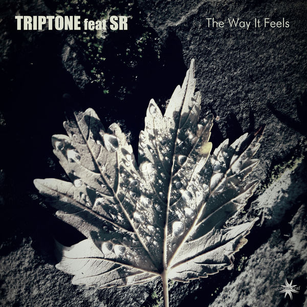 Triptone - The Way It Feels