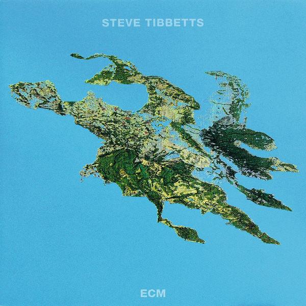 Steve Tibbetts - Big Map Idea